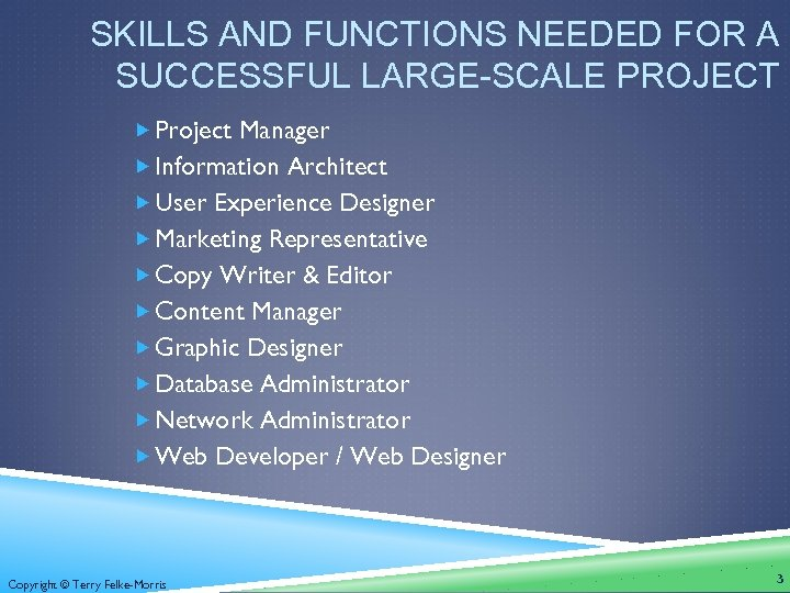 SKILLS AND FUNCTIONS NEEDED FOR A SUCCESSFUL LARGE-SCALE PROJECT Project Manager Information Architect User