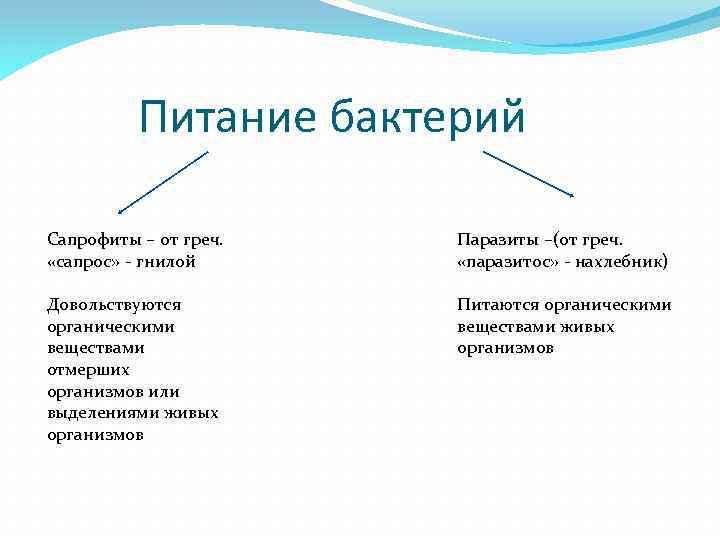 Питание бактерий Сапрофиты – от греч. «сапрос» - гнилой Паразиты –(от греч. «паразитос» -