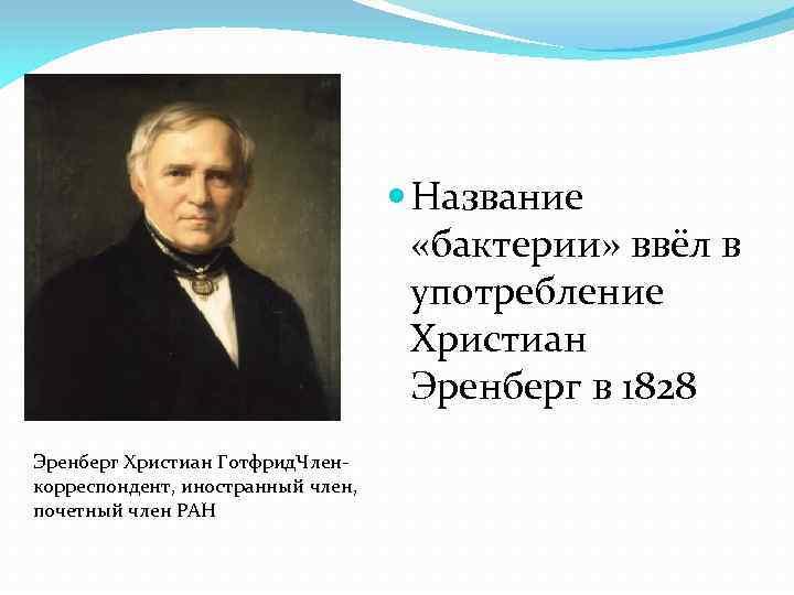 Название «бактерии» ввёл в употребление Христиан Эренберг в 1828 Эренберг Христиан Готфрид. Членкорреспондент,