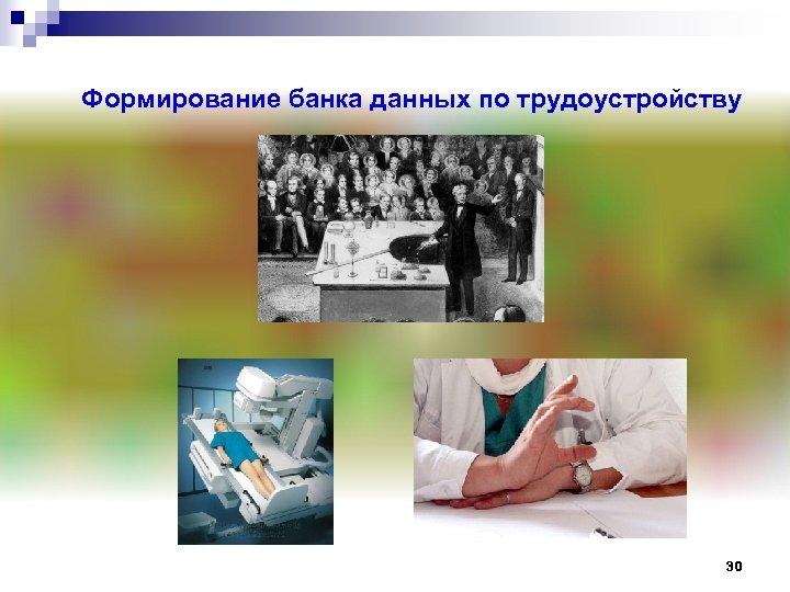 Формирование банка данных по трудоустройству 30