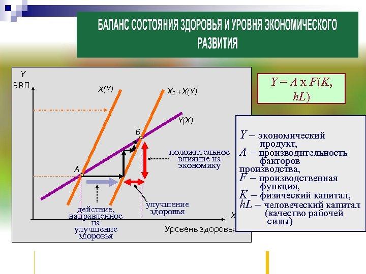 Y ВВП Х(Y) Y = A x F(K, h. L) Х 1 +Х(Y) Y(Х)