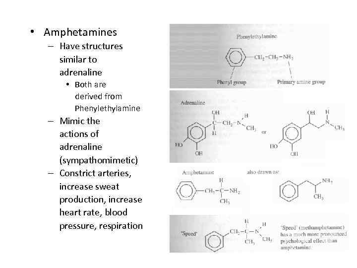 • Amphetamines – Have structures similar to adrenaline • Both are derived from