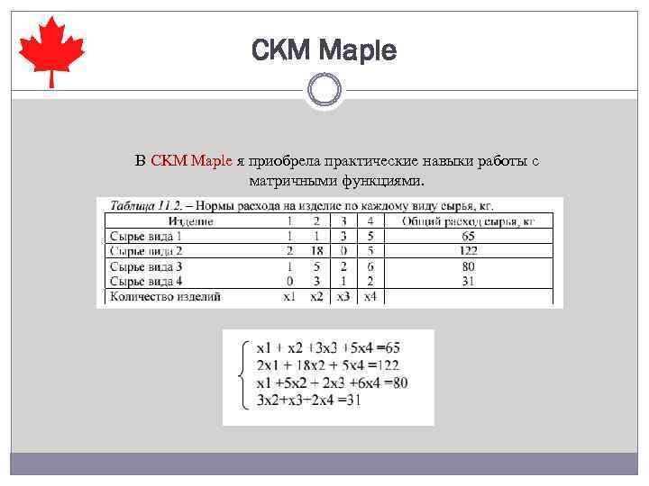 СKM Maple В CKM Maple я приобрела практические навыки работы с матричными функциями.