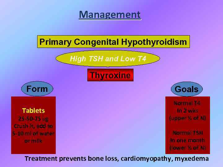 Management Primary Congenital Hypothyroidism High TSH and Low T 4 Thyroxine Form Tablets 25