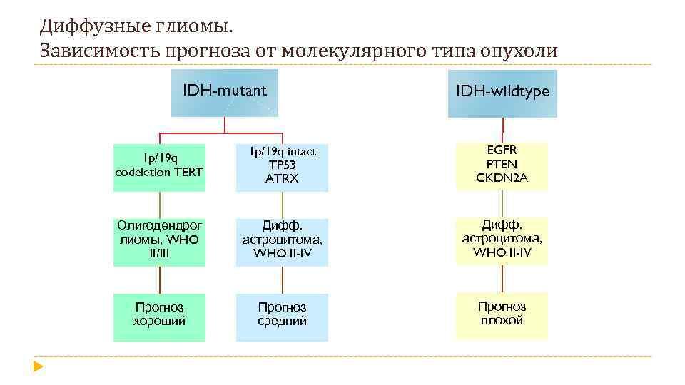 Диффузные глиомы. Зависимость прогноза от молекулярного типа опухоли IDH-mutant IDH-wildtype 1 p/19 q codeletion
