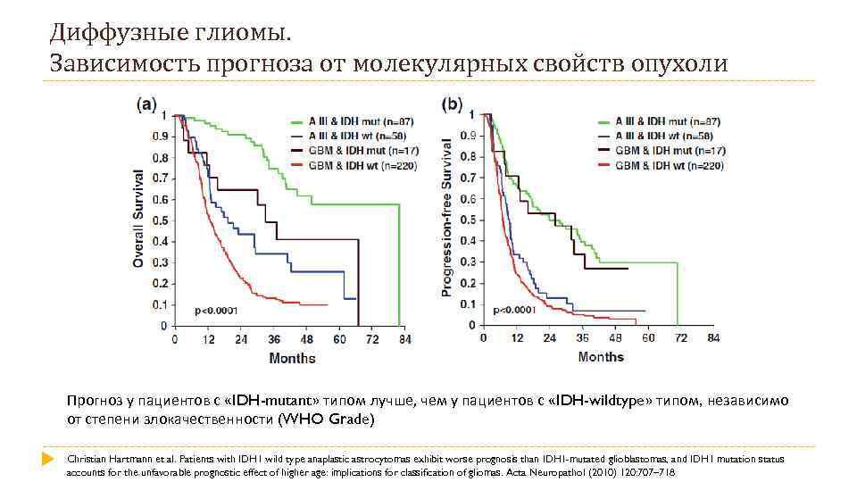 Диффузные глиомы. Зависимость прогноза от молекулярных свойств опухоли Прогноз у пациентов с «IDH-mutant» типом