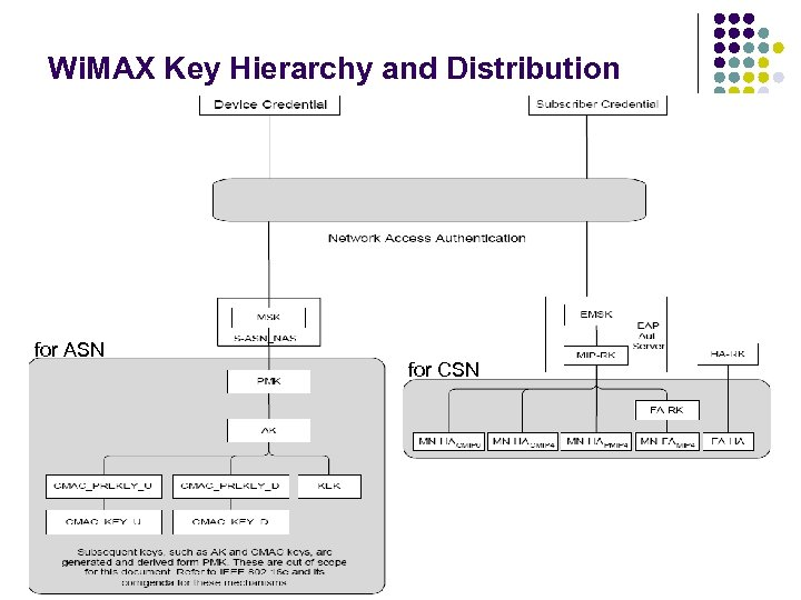 Wi. MAX Key Hierarchy and Distribution for ASN for CSN