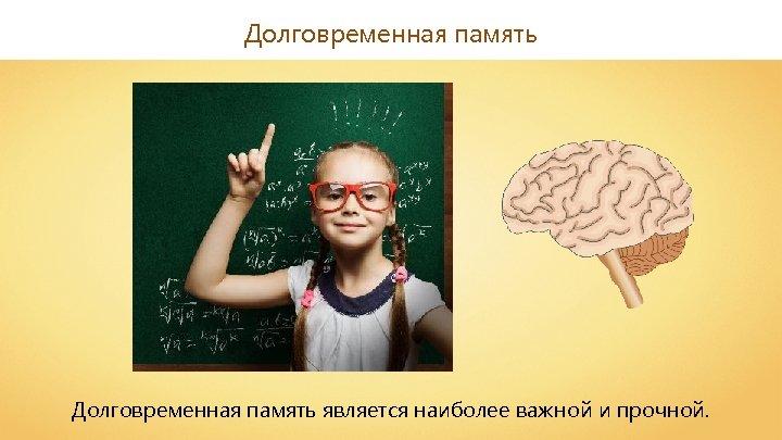 Долговременная память является наиболее важной и прочной.