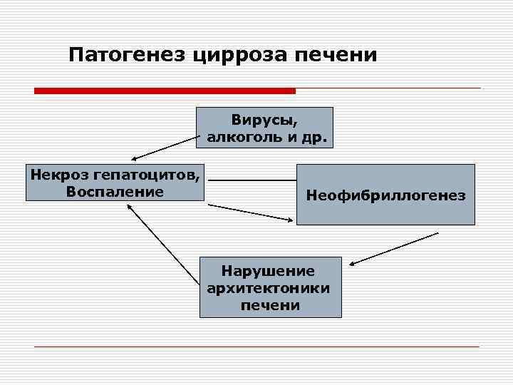 Патогенез цирроза печени Вирусы, алкоголь и др. Некроз гепатоцитов, Воспаление Неофибриллогенез Нарушение архитектоники печени