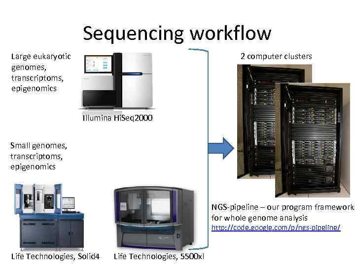 Sequencing workflow Large eukaryotic genomes, transcriptoms, epigenomics 2 computer clusters Illumina Hi. Seq 2000