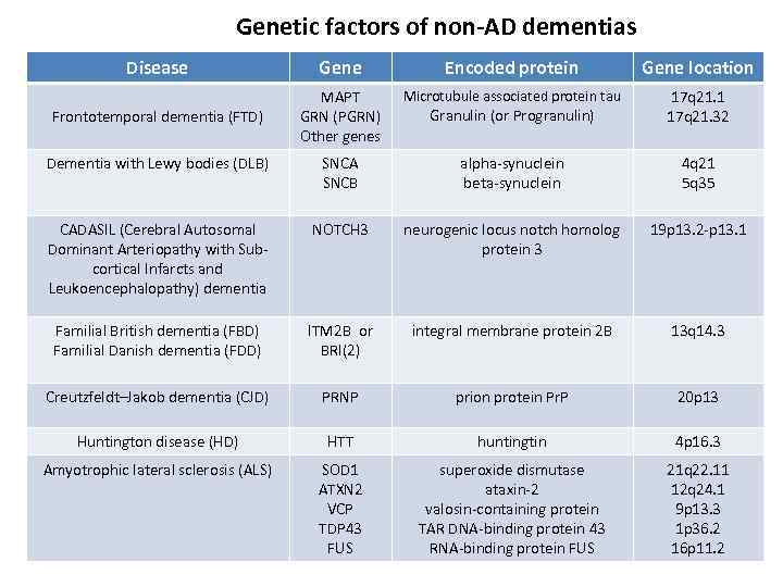Genetic factors of non-AD dementias Disease Gene Encoded protein Gene location Microtubule associated protein