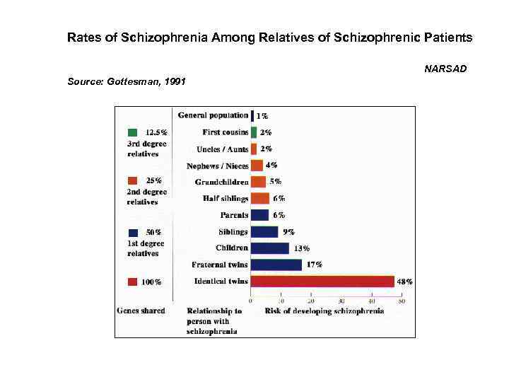 Rates of Schizophrenia Among Relatives of Schizophrenic Patients NARSAD Source: Gottesman, 1991