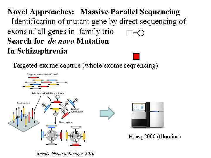 Novel Approaches: Massive Parallel Sequencing Identification of mutant gene by direct sequencing of exons