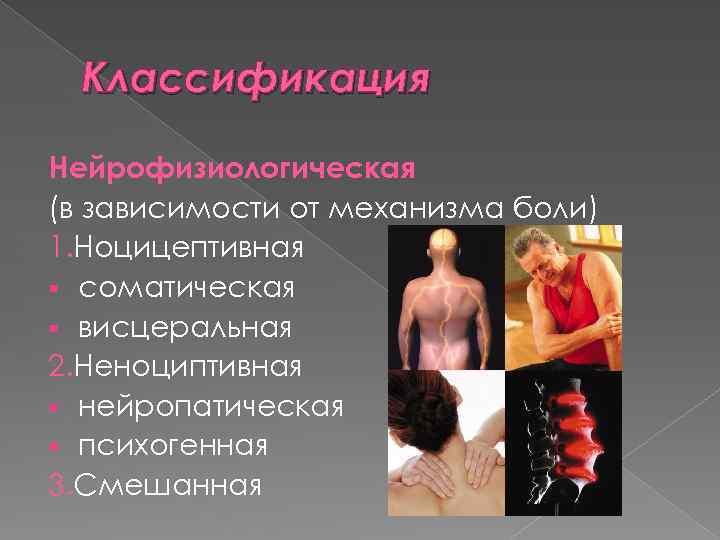 Классификация Нейрофизиологическая (в зависимости от механизма боли) 1. Ноцицептивная § соматическая § висцеральная 2.