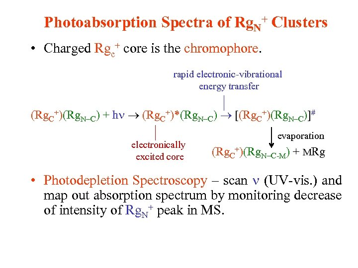 Photoabsorption Spectra of Rg. N+ Clusters • Charged Rgc+ core is the chromophore. rapid