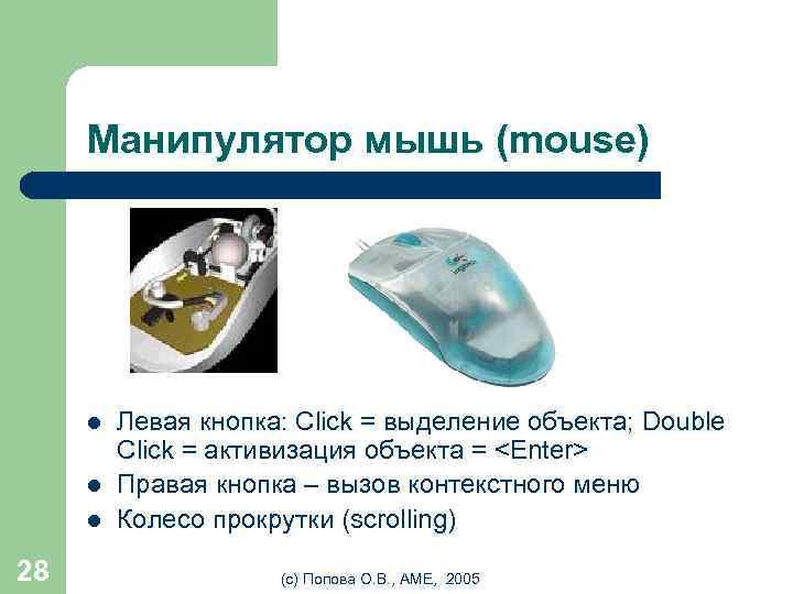 Манипулятор мышь (mouse) l l l 28 Левая кнопка: Click = выделение объекта; Double