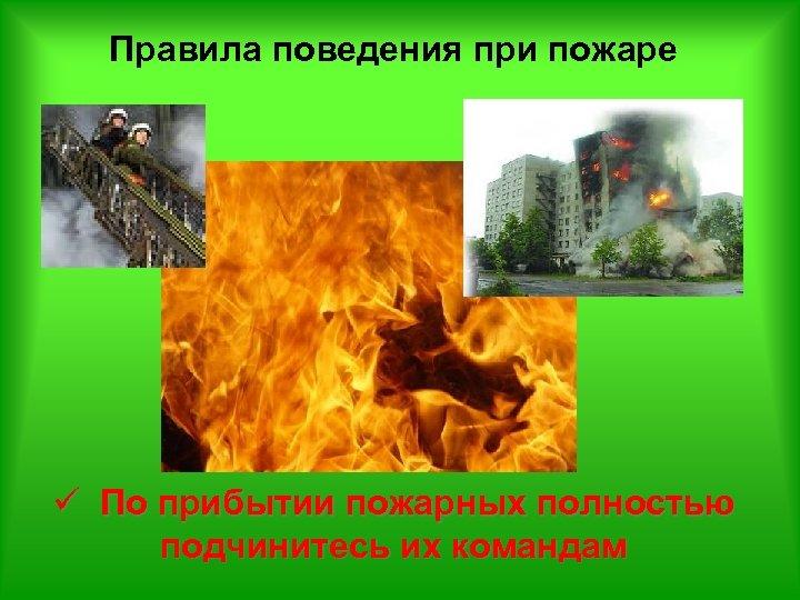 Правила поведения при пожаре ü По прибытии пожарных полностью подчинитесь их командам