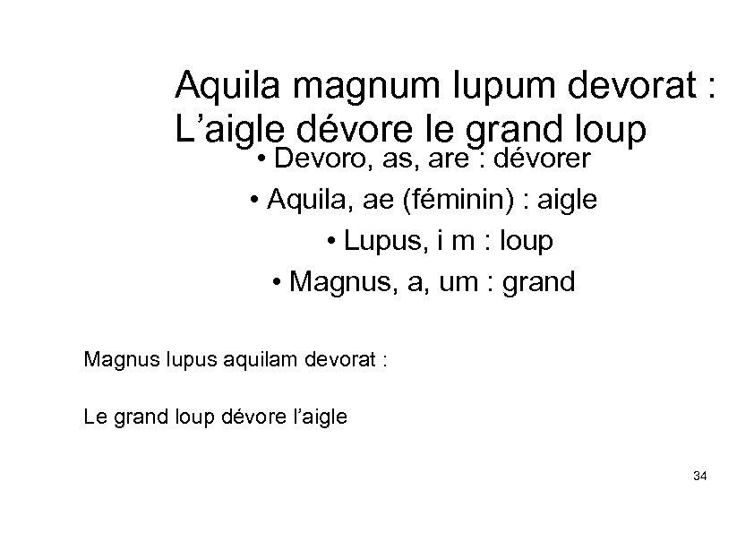 Aquila magnum lupum devorat : L'aigle dévore le grand loup • Devoro, as, are