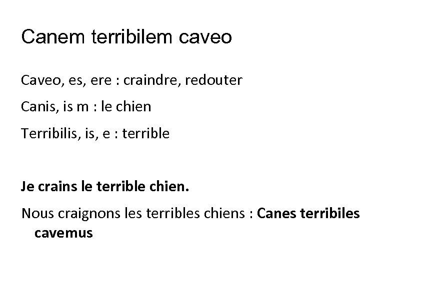 Canem terribilem caveo Caveo, es, ere : craindre, redouter Canis, is m : le