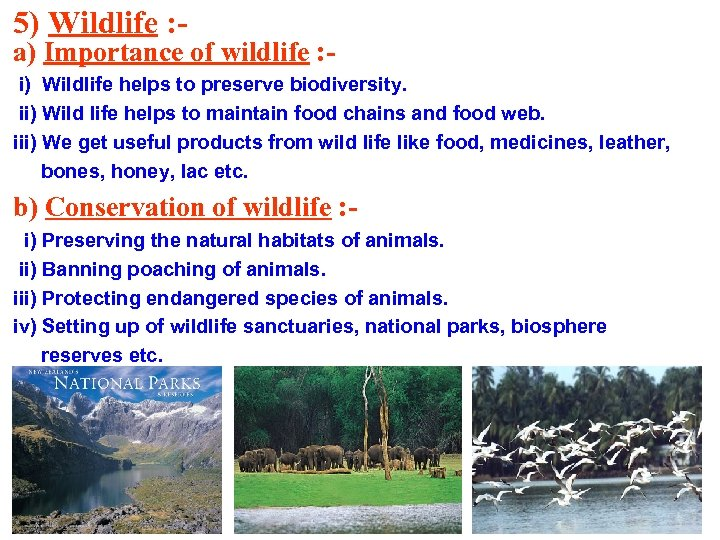 5) Wildlife : - a) Importance of wildlife : i) Wildlife helps to preserve