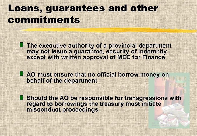 Loans, guarantees and other commitments The executive authority of a provincial department may not