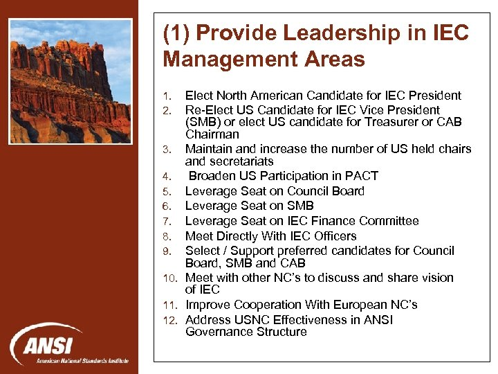 (1) Provide Leadership in IEC Management Areas Elect North American Candidate for IEC President