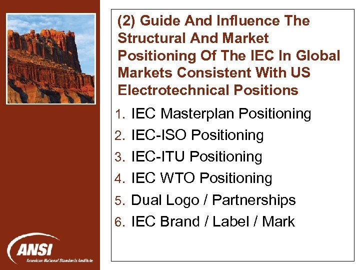 (2) Guide And Influence The Structural And Market Positioning Of The IEC In Global