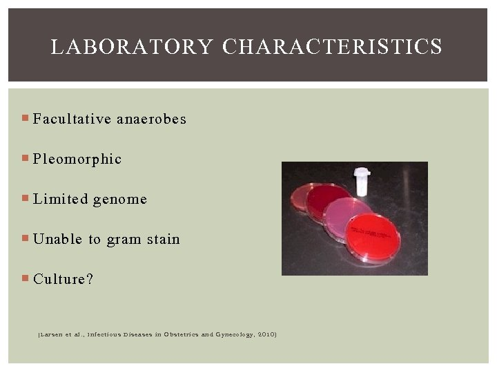LABORATORY CHARACTERISTICS Facultative anaerobes Pleomorphic Limited genome Unable to gram stain Culture? (Larsen et