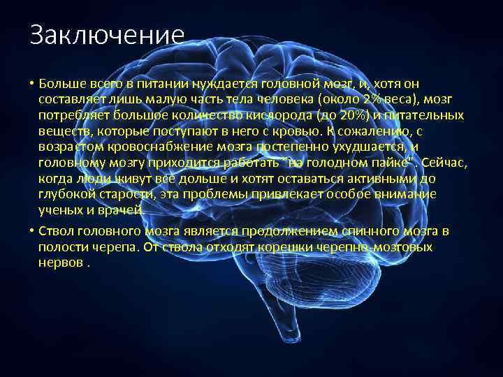 Заключение • Больше всего в питании нуждается головной мозг, и, хотя он составляет лишь