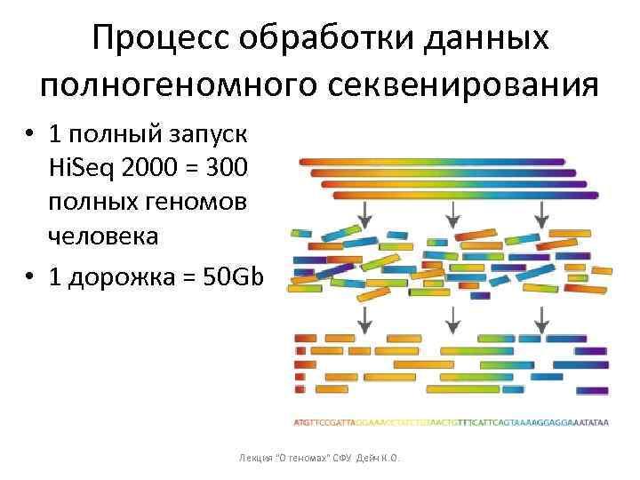 Процесс обработки данных полногеномного секвенирования • 1 полный запуск Hi. Seq 2000 = 300