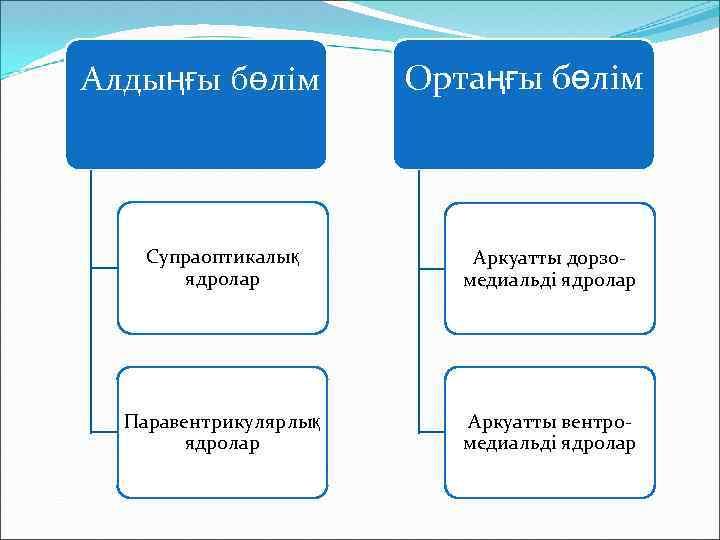 Алдыңғы бөлім Ортаңғы бөлім Супраоптикалық ядролар Аркуатты дорзомедиальді ядролар Паравентрикулярлық ядролар Аркуатты вентромедиальді ядролар