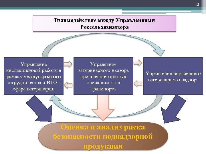 2 Взаимодействие между Управлениями Россельхознадзора Управление инспекционной работы в рамках международного сотрудничества и ВТО