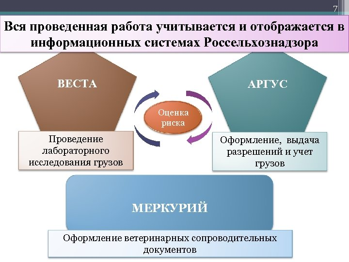 7 Вся проведенная работа учитывается и отображается в информационных системах Россельхознадзора ВЕСТА АРГУС Оценка
