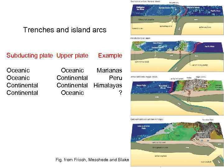 Trenches and island arcs Subducting plate Upper plate Oceanic Continental Example Oceanic Marianas Continental