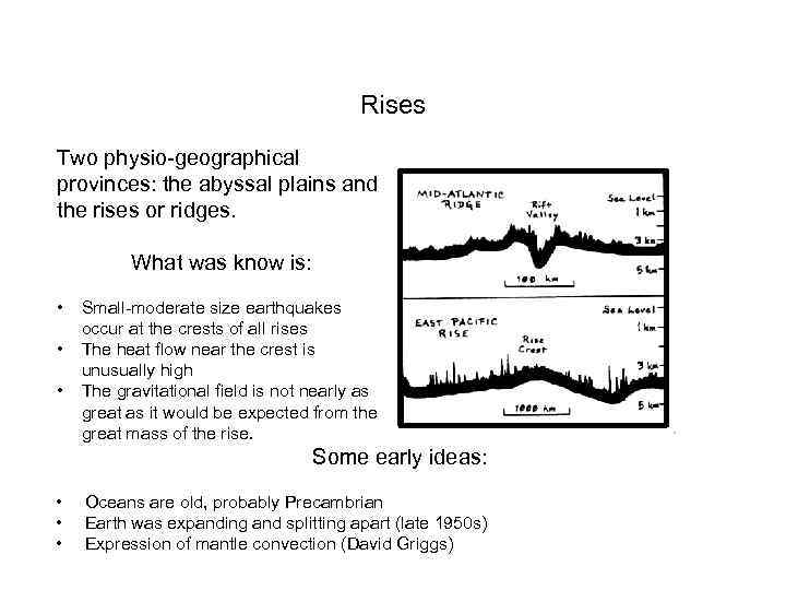 Rises Two physio-geographical provinces: the abyssal plains and the rises or ridges. What was