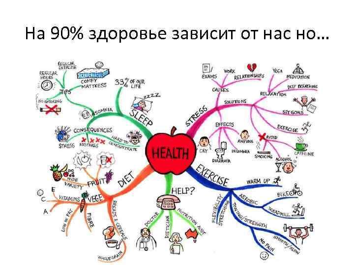 На 90% здоровье зависит от нас но…