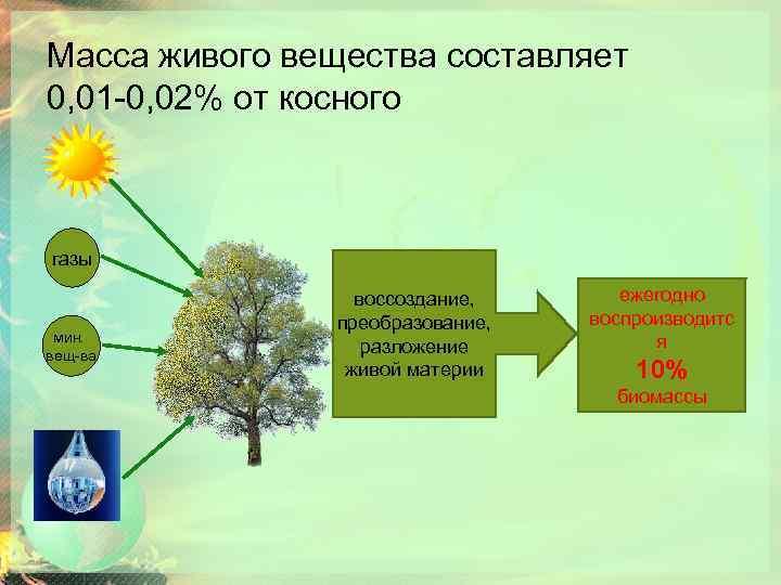 Масса живого вещества составляет 0, 01 -0, 02% от косного В газы мин. вещ-ва
