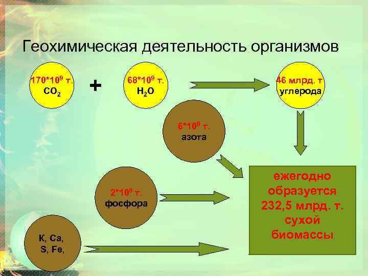 Геохимическая деятельность организмов 170*109 т. СО 2 + 68*109 т. Н 2 О 46