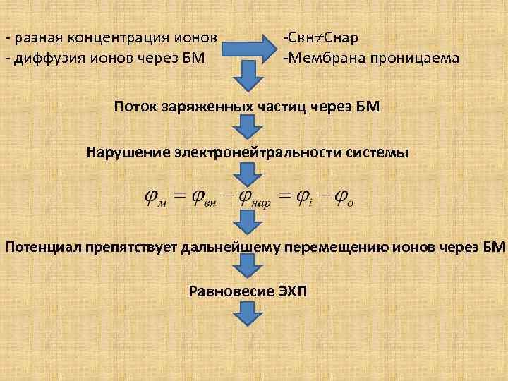 - разная концентрация ионов - диффузия ионов через БМ -Свн Снар -Мембрана проницаема Поток