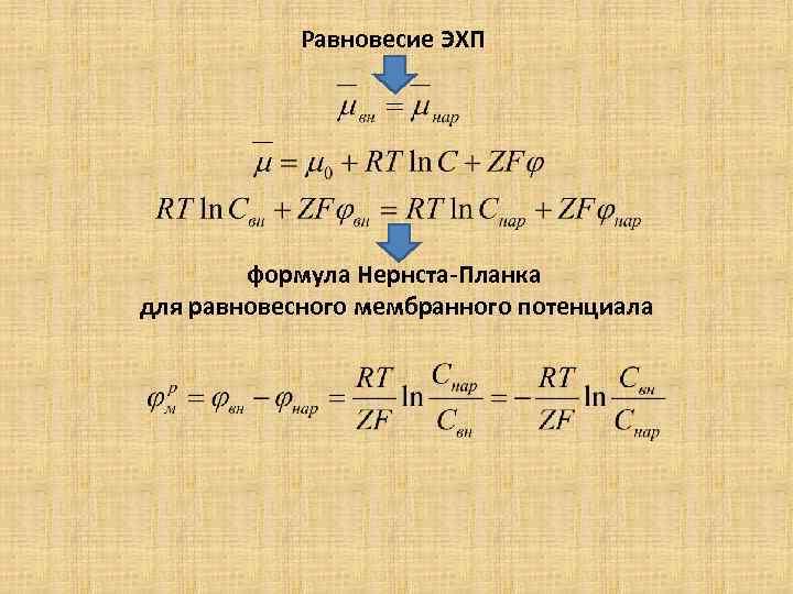 Равновесие ЭХП формула Нернста-Планка для равновесного мембранного потенциала