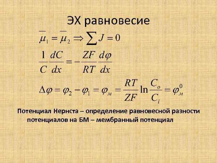 ЭХ равновесие Потенциал Нернста – определение равновесной разности потенциалов на БМ – мембранный потенциал