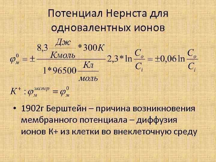 Потенциал Нернста для одновалентных ионов • 1902 г Берштейн – причина возникновения мембранного потенциала