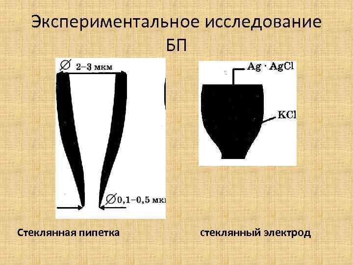 Экспериментальное исследование БП Стеклянная пипетка стеклянный электрод