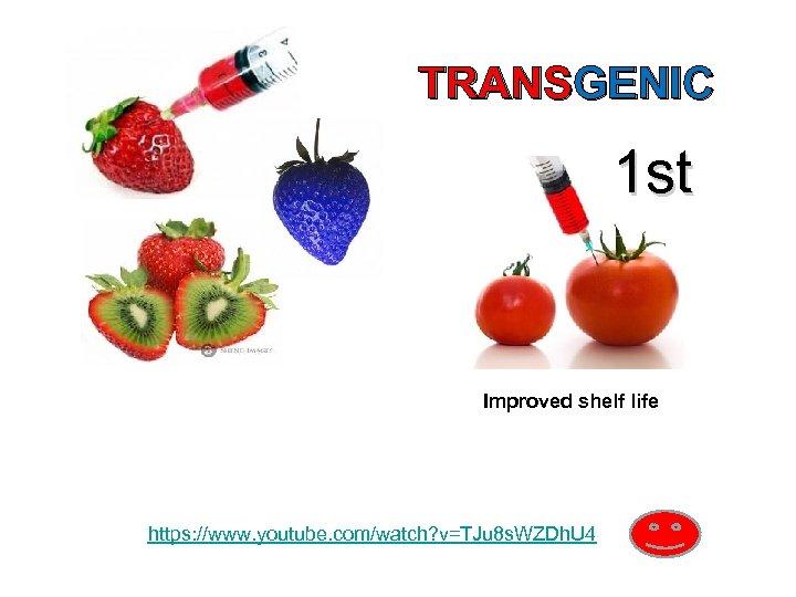 TRANSGENIC 1 st Improved shelf life https: //www. youtube. com/watch? v=TJu 8 s. WZDh.