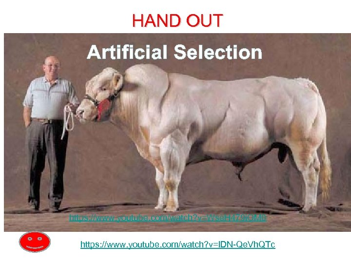 HAND OUT Artificial Selection https: //www. youtube. com/watch? v=Wse. H 479 i. OM 0