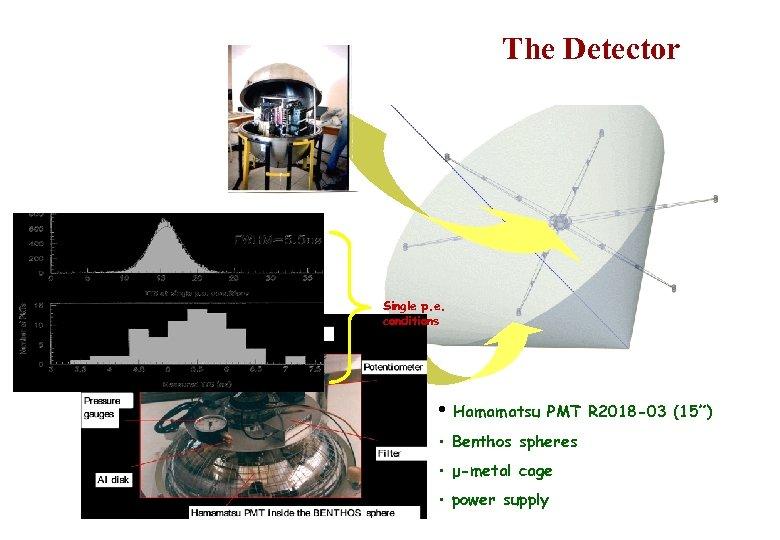 """The Detector Single p. e. conditions • Hamamatsu PMT R 2018 -03 (15"""") •"""