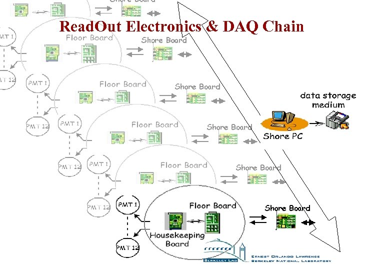 Read. Out Electronics & DAQ Chain