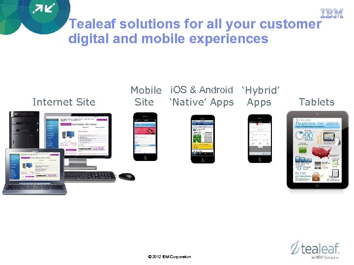 Tealeaf solutions for all your customer digital and mobile experiences Internet Site Mobile i.