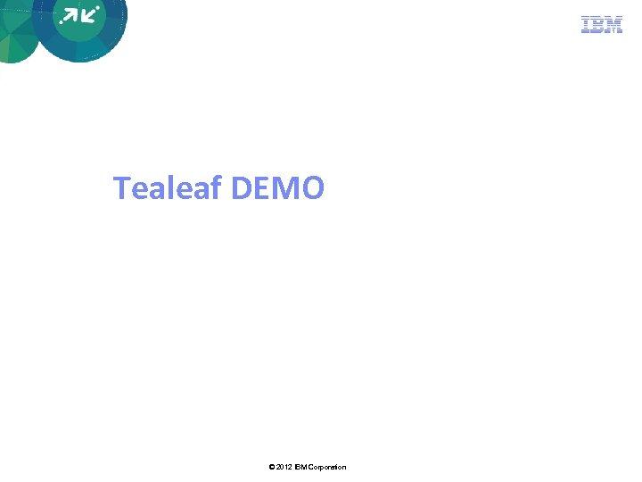Tealeaf DEMO © 2012 IBM Corporation