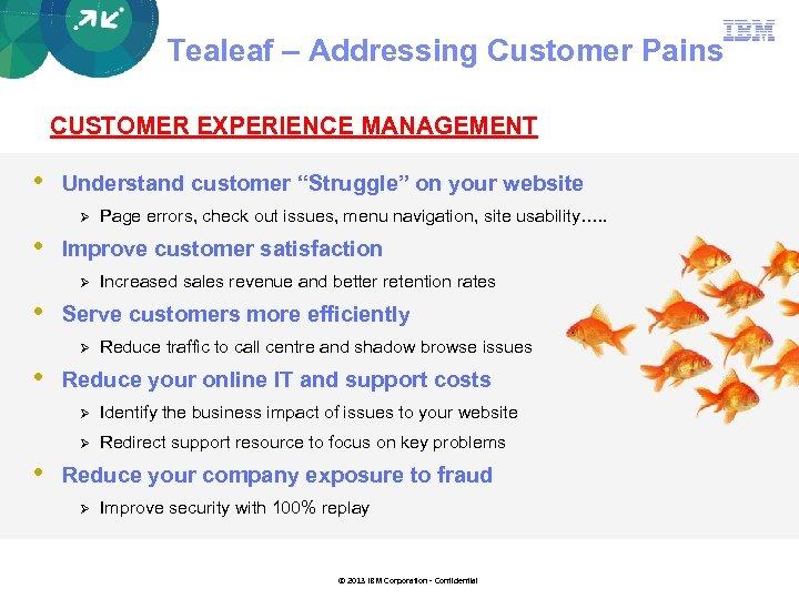 "Tealeaf – Addressing Customer Pains CUSTOMER EXPERIENCE MANAGEMENT • Understand customer ""Struggle"" on your"